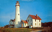 Fenwick Island Posters - Fenwick Island Lighthouse 1950 Poster by Skip Willits