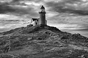 Eunice Gibb - Ferryland Lighthouse