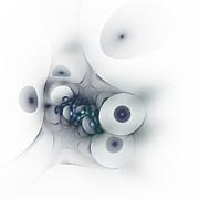 Stefan Kuhn - Fertility