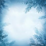 Mythja  Photography - Festive winter background