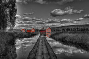 Timber Framed Prints - Fetsund Timber Booms - Selective Color Framed Print by Erik Brede