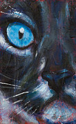 Contemporary Animal  Acrylic Paintings - Fibonaccis Feline III by Rosemary Conroy