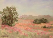 Spring Scenes Pastels Framed Prints - Field in Pink and Coral Framed Print by Barbara Smeaton