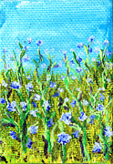 Regina Valluzzi - Field of cornflowers 3...