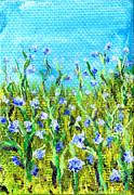 Regina Valluzzi - Field of cornflowers 3 by 2 inch miniature painting