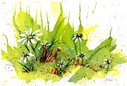 Claire Bull - Field of Daisies