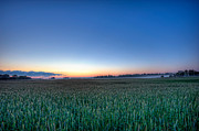 D700 Originals - Field of dreams by Michael Ver Sprill