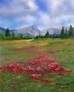 Judy Filarecki - Field of Flowers...
