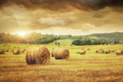 Hayrick Posters - Field of freshly bales of hay with beautiful sunset Poster by Sandra Cunningham