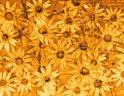 Flower Gardens Digital Art Prints - Field of Gold Print by Ann Powell