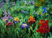Diane Kraudelt - Field Of Irises