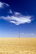 Intolerant Prints - Field with Pole Print by Tim Hester