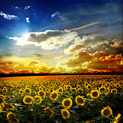 Field With Sunflowers Print by Boon Mee