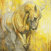 Horse Art Paintings - Fields of Gold by Silvana Gabudean