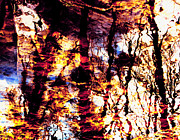 Fiery Reflections Print by Shawna  Rowe