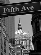 Elizabeth Hardie - Fifth Avenue