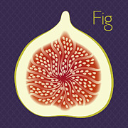 Orange Art Posters - Fig Poster by Christy Beckwith