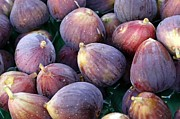Figs Prints - Figs Print by Denise Pohl
