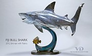 Shark Sculptures - Fiji Bull Shark by Victor Douieb