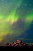 Chugach Posters - Filled With Aurora Poster by Ron Day