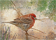 Debbie Portwood Prints - Finch Greeting Card Fathers Day Print by Debbie Portwood