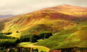 Lyrical Photos - Find the Soul. Golden Hills of Wicklow. Ireland by Jenny Rainbow