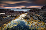 Michael Howard - Fingal Bay - The Golden...