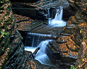 Finger Prints - Finger Lakes Waterfalls Print by Robert Harmon
