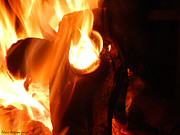 Elf Photos - Fire Elemental by Patricia Allingham Carlson