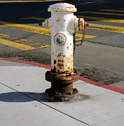 Crosswalk Photos - Fire Hydrant 2 by Molly Costa