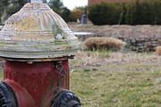 Adrienne Lattuca - Fire Hydrant