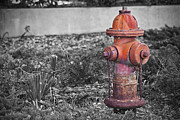 Chris Brehmer Photography - Fire Hydrant