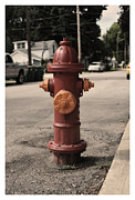 Michael Edwards - Fire Hydrant