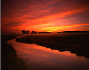 Wildlife Refuge Photo Prints - Fire in the Sky Print by Ray Mathis