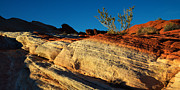 Valley Of Fire Framed Prints - Fire Lines Framed Print by Chad Dutson