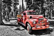 Cheryl Young - Fire Truck 24