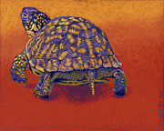 Hot Pastels Posters - Fire Walker - Box Turtle Poster by Tracy L Teeter