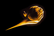Fast Ball Photo Prints - Fireball Fastball Print by Trekkerimages Photography