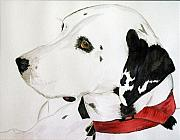 Dalmation Prints - Firedog Print by John W Walker