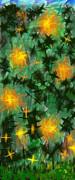 Fireflies Print by Lena Wilhite