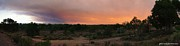 Colorado Fires Framed Prints - Firesky Pano Framed Print by JFantasma Photography