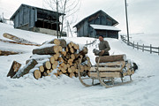 Shed Photo Originals - Firewood Sleigh by Jan Faul