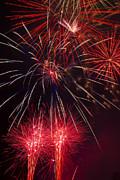 Firework Majesty  Print by Garry Gay