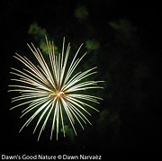 Fireworks Over The Lake 32 Print by Dawn's Good Nature