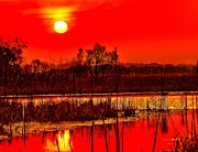 Firey Posters - Firey Dawn over the Marsh Poster by Nick Zelinsky