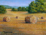 Hay Bales Pastels Framed Prints - First Cut Framed Print by Tanja Ware