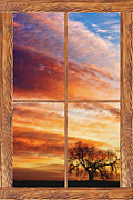 Boardroom Posters - First Dawn Barn Wood Picture Window Frame View Poster by James Bo Insogna