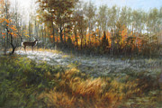 White Tail Paintings - First Frost by David Henderson