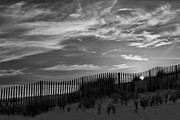 Sand Fences Prints - First Light At Cape Cod Beach BW Print by Susan Candelario