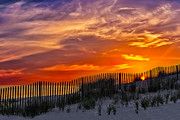 Sand Fences Prints - First Light At Cape Cod Beach  Print by Susan Candelario